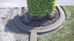 Lawn Edging Federal Way