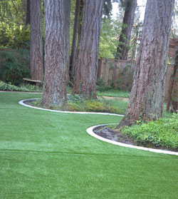 Landscape Borders Puyallup