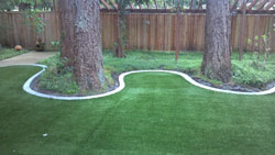 Landscape Edging Puyallup