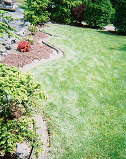 Concrete Curbing and Edging Bonney Lake