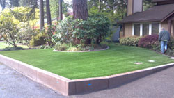 Lawn Edging Sumner WA